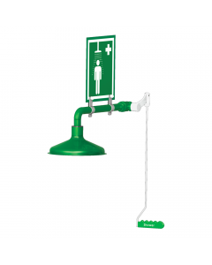 Ring main mounted laboratory safety shower