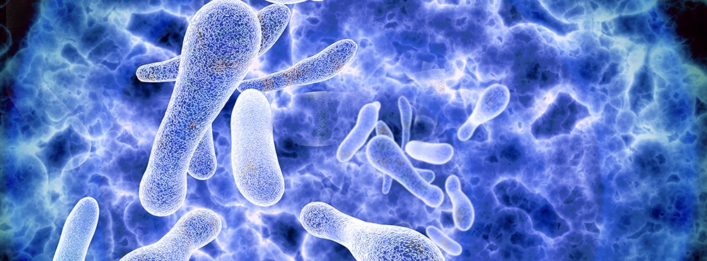 legionella bacteria render